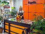 Клумба, супермаркет цветов